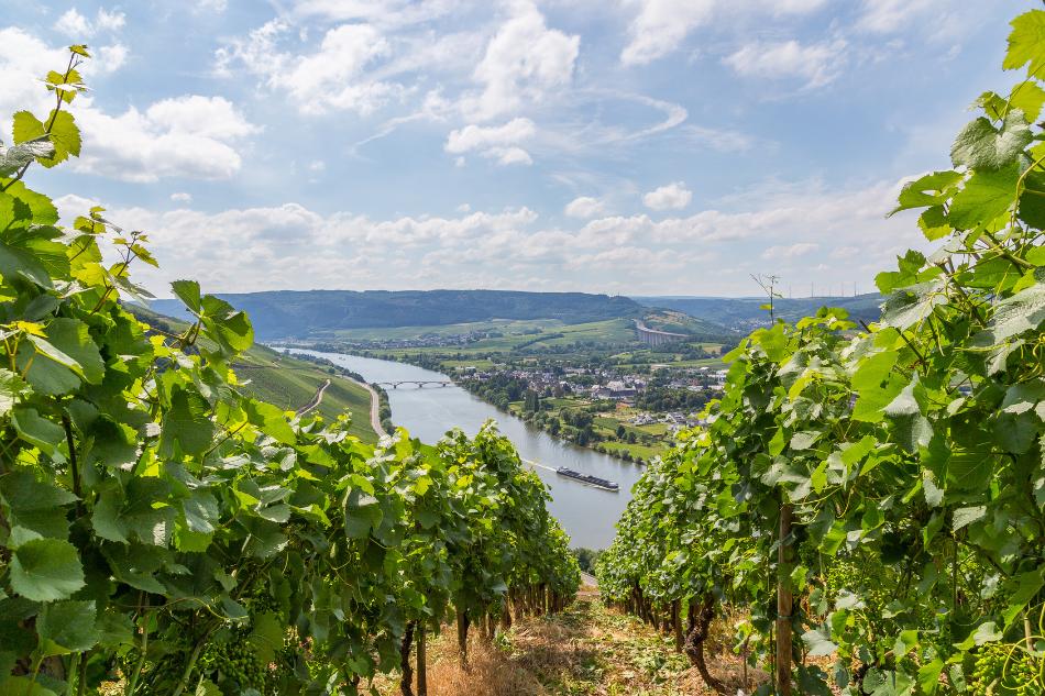 Betriebsasuflug Ideen Rheinland-Pfalz